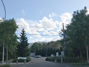 「星観緑地」北側の入り口