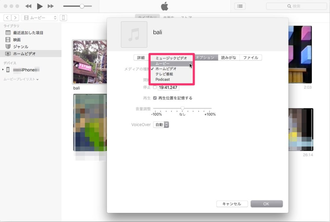 iTunes の「ムービーの情報」ウィンドウ「オプション」タブ。